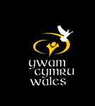 YCW Logo 2